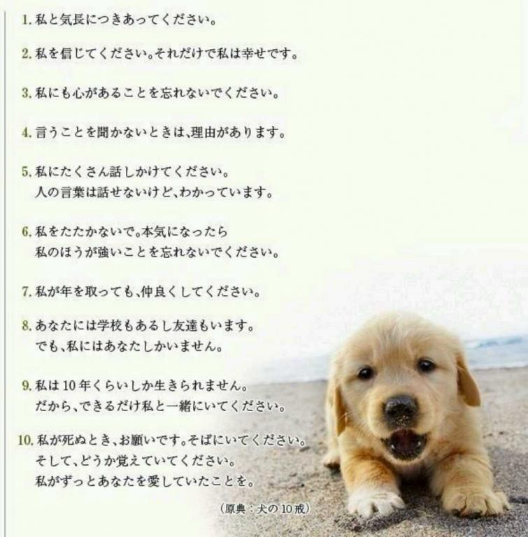 原典:犬の10戎